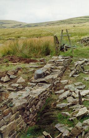Dry Stone Wall in progress: 1