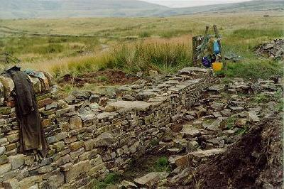 Dry Stone Wall in progress: 2