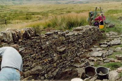 Dry Stone Wall in progress: 3